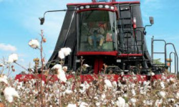 CroppedImage350210-CaseIH-Module-Express-Cotton-Pickers-cover.jpg