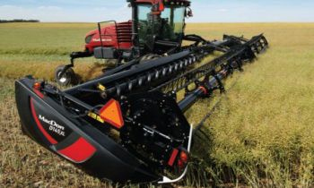 CroppedImage350210-MD-D1XL-2019.jpg
